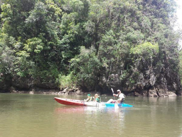 Plaukimas baidarėmis Krabi po mangrūves