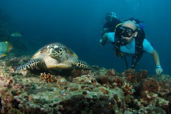 Povandeninis pasaulis Tailande