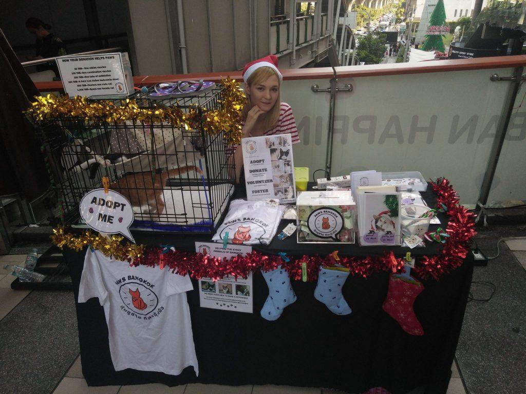 Toma savanoriauja kačių prieglaudos labdaros renginyje Bankoke