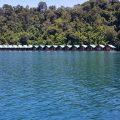 Nameliai ant ežero - taip, teisingai, tai nėra nameliai prie ežero ant kranto :)