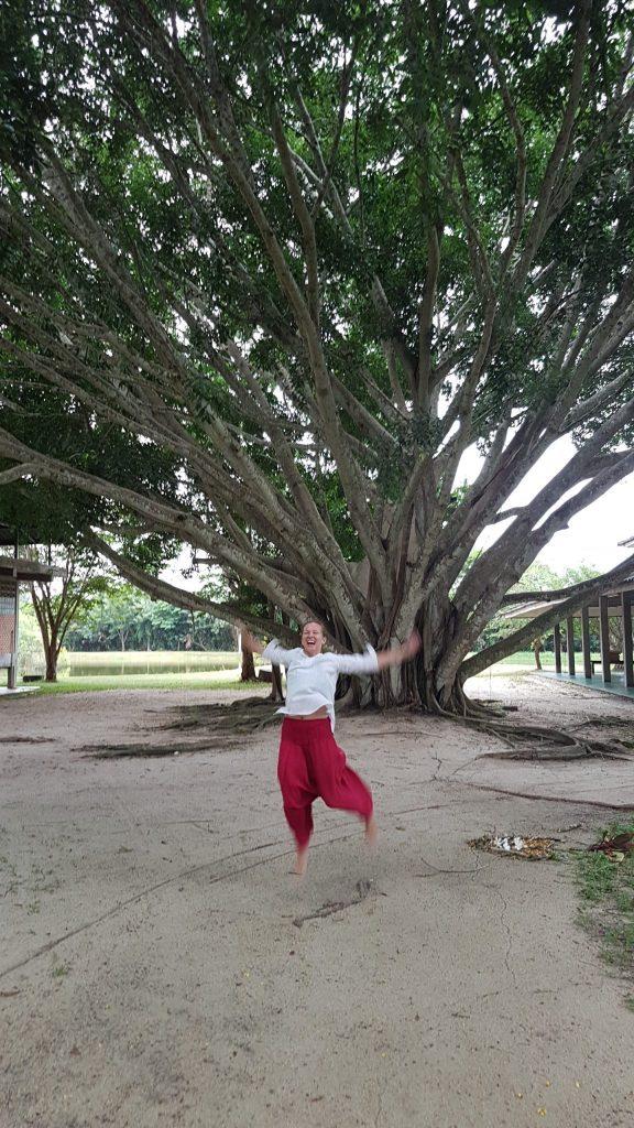 Po meditacijų stovyklos