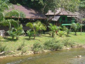 Art river lodge - ant upės kranto