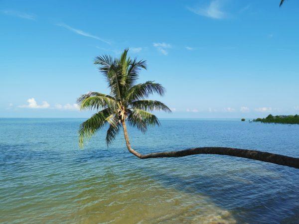 koh phangan sala - poilsis Tailando paplūdimyje