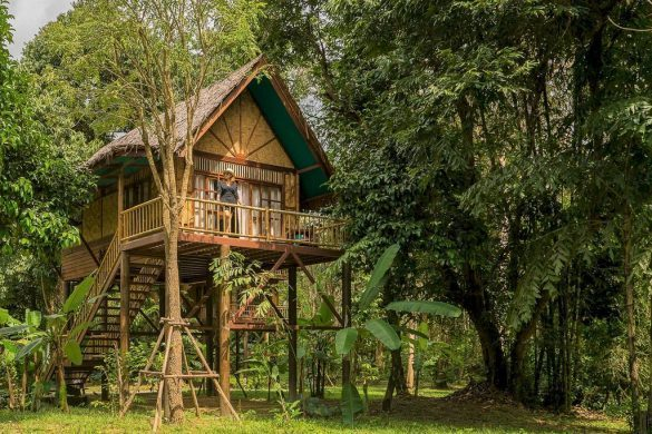 our jungle camp tree house