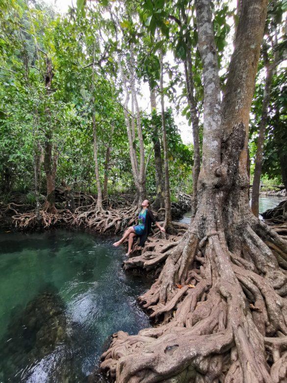 nacionalinis parkas Krabi