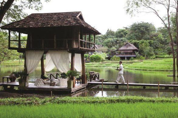 four season resort ryžių laukuose