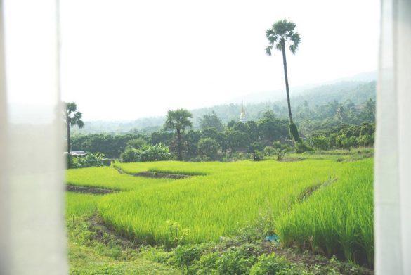 Suan Sook Homestay viešbutis ryžių laukuose