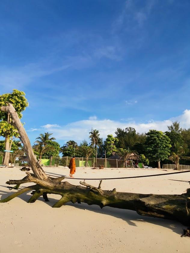 saloje galima pamatyti vietiniu gyvenimo