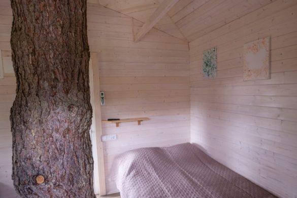 namelis medyje anykščiuose